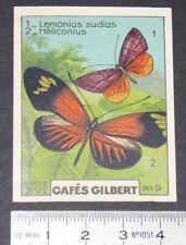 CHROMO 1936 CAFES GILBERT PAPILLONS BUTTERFLY LEMONIAS SUDIAS HELICONIUS