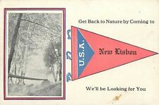 """""""Get Back to Nature"""" in New Lisbon Wisconsin~We're Looking~1914 Pennant Postcard"""