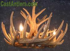 Whitetail Cast Antler Chandelier 6 Lights