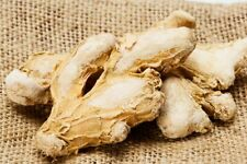 Dry Ginger Indian Sunth Soonth Ayurveda Spice Whole Free Shipping