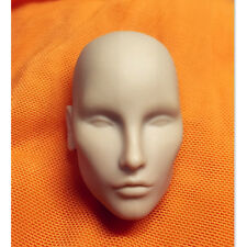 1/6 FR factory Integrity Fashion Royalty elise doll head for ooak 4