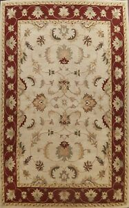 Floral Beige Traditional Oriental Area Rug Hand-Tufted Wool Palace Size 12x16 ft
