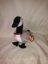 Loosy the Canada Goose Ty Beanie Baby All tags
