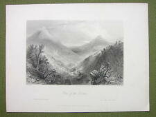 IRELAND Glen of Downs - 1840s BARTLETT Engraving Antique Print