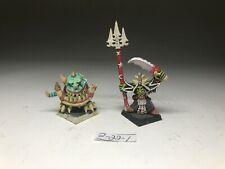Warhammer Orcs and Goblins - Skarsnik And Gobbla - Metal OOP - Painted Well