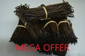 10 Bourbon Vanilla Pods  Madagascar Beans Grade B DRY PREMIUM ORGANIC