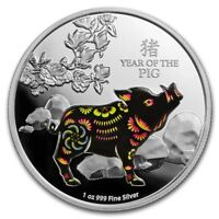 Lunar Silver Coin - Silver $2 Proof Coin- 1 OZ  Year of the Pig 2019