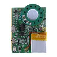 Programmable Sound Chip Voice Chip Music Board Module For Greeting Card Board