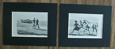 Diptych Print Horse Wesley Dennis Colt Walk To The Plane 1951 2 Bookplate Matted