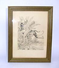Erotische Kunst Radierung um 1910 signiert