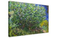 Lilac Bush by Vincent Van Gogh Canvas Print For Living Room Bedroom Wall Art