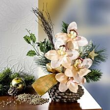 Orchideen Gesteck Champagner im Topf Zapfen Tanne 35 cm Advent Weihnachten