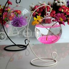Hanging Glass Flower Plant Vase Bottle Terrarium Container Garden Ball Decor