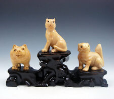 3 Japanese Boxwood Hand Carved *Dogs/Puppy* Netsuke w/ Wooden Stand #06241606