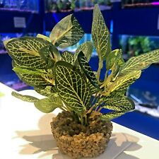 Artificial Green & White Aquarium Plant Silk Leaves Gravel Weighted Base