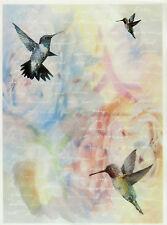 Printed Translucent / Vellum Scrapbook  Paper A/4 Kolibri