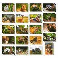 """40x Wild Animal Postcards, Tiger, Bear, Giraffe, Elephant, Lion, Zebra, 4x6"""""""