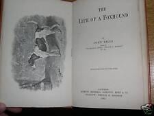 Rare Foxhound Dog Book 1892 By Mills