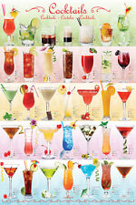 THE COCKTAILS POSTER 35 Mixed Alcoholic Drinks Poster For Restaurant, Bar, Home