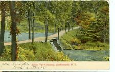 SCHENECTADY NEW YORK-NATURE SCENE VAIL CEMETERY-(CM-18)
