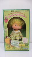 VINTAGE Strawberry Shortcake Lemon Meringue Doll w Comb 43380 1980 MIB NOS Toy