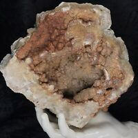 """8-1/2"""" Geode Natural Red Orange Botryoidal Chalcedony Crystal Quartz Agate 7.3Lb"""