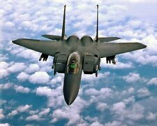 New 8x10 Photo: F-15 E Strike Eagle Fighter Jet of the 4th Fighter Wing