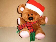 Ty Beanie Buddies Pooky Plush Garfield & Characters Bear Santa Hat 2005 RARE 8''