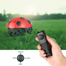 RC Cars Toy Cars Intelligent Robot Wireless Remote Control DIY Toys Toy Ladybug