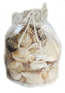 Large Black & White Mixed 25 Pcs Seashells, Assorted Craft Shells Home Decor New
