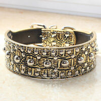 Large Breed New Gold Brown Leather Spiked Studded Dog Collar Pitbull Bully M L