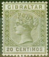 Gibraltar 1896 20c Olive-Green & Brown SG24 Fine Mtd Mint