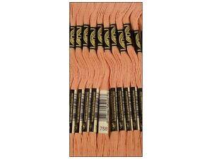 DMC Bulk Buy Thread 6-Strand Embroidery Cotton 8.7 Yards Very Light Terra Cot...