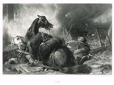 """Landseer's - """"WAR"""" engraved by Stocks - Steel Engraving -1861"""
