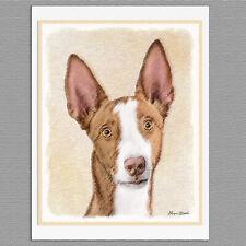 6 Ibizan Hound Dog Blank Art Note Greeting Cards