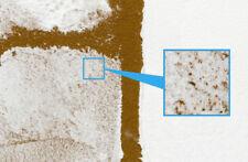 Tamiya  DIORAMA TEXTURE Paint  SNOW EFFECT Set of 2   # 87119 87120