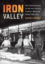 Trillium Bks.: Iron Valley : The Transformation of the Iron Industry in...