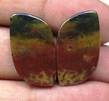 NATURAL BLOOD STONE CABOCHON FANCY SHAPE PAIR 19.45 CTS LOOSE GEMSTONE D 5803