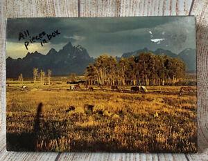 Springbok Jigsaw Puzzle Pastures Of Plenty Vintage 1973 350 Pc
