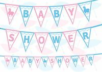 Baby Shower Gender Reveal White Baby Blue Pink Theme Bunting Banner 12 flags 8ft