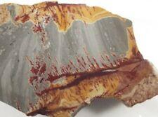 "Sonora Dendritic Rhyolite Slab Mexico 7.4"" X 2.7"" X .2"" to .3"" wedge 189 Grams"
