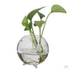 Baoblaze 6x Glass Flower Vase Hydroponic Pot Microlandscape Terrarium Holder