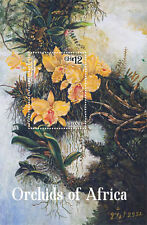 Ghana-2014-Flowers-Orchids of Africa