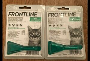 Frontline +  Spot On Cat and Ferret X 2