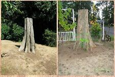 Beautiful Old Growth Cedar Stump 7' Tall - Ideal Landscape Centerpiece! Mustc!