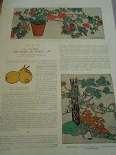 Illustration Un Salon des moins de 15 ans Art déco 1929