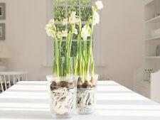 FRENCH SHABBY CHIC GLASS SPRING PLANTER POT VOTIVE LANTERN  FLOWER VASE WEDDING