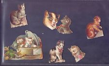 A Nice lot of Vintage Scraps,Cats all scanned   (SB28)