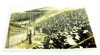 Antique RPPC POSTCARD Unused 1913 WINNIPEG CANADA STAMPEDE CROWD VIEW EVENT