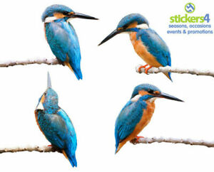 Set of 4 Photorealistic Kingfisher Window Cling Stickers